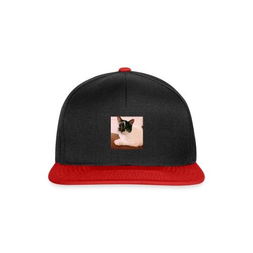 Cats - Snapback cap