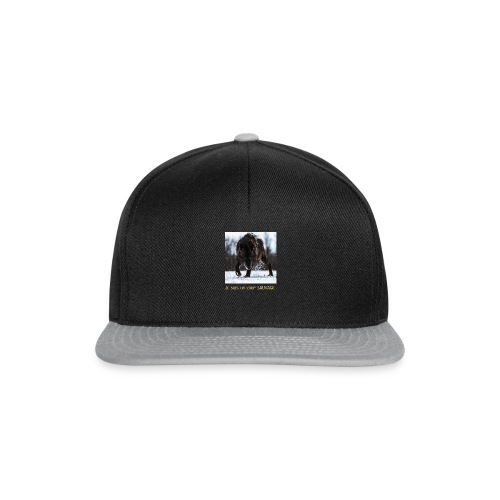 loup sauvage - Casquette snapback
