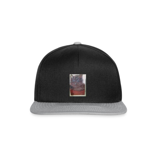 IMG 20151228 181649 - Casquette snapback