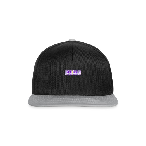 Logo_1483204817513 - Snapback Cap