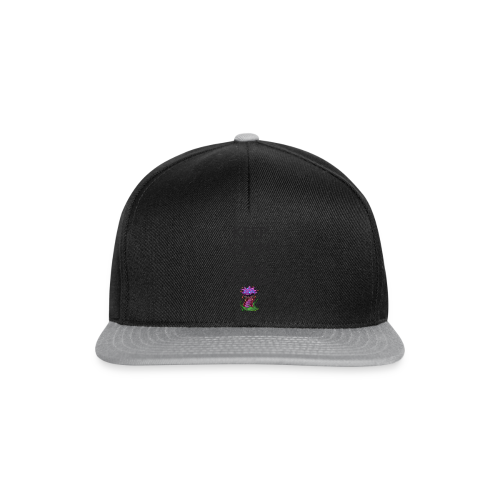 Steal the nash F - Casquette snapback
