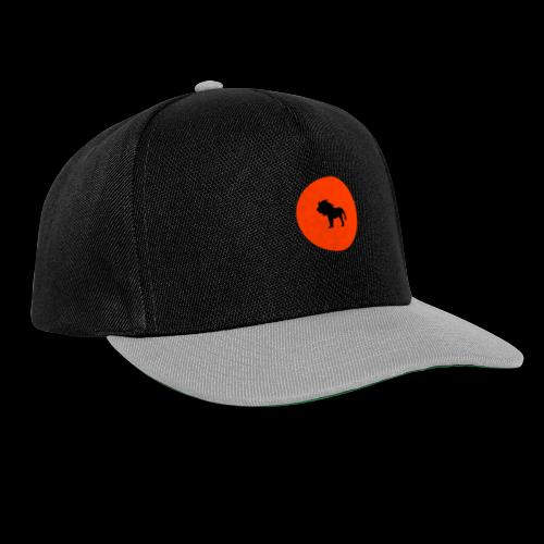 AK Exclusive Logo - Snapback Cap
