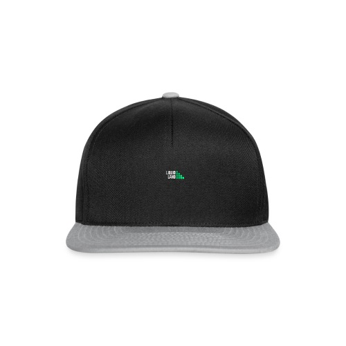 Liquid Land - Gorra Snapback
