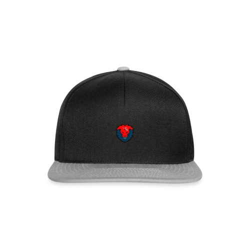 red and blue colourway - Snapback Cap