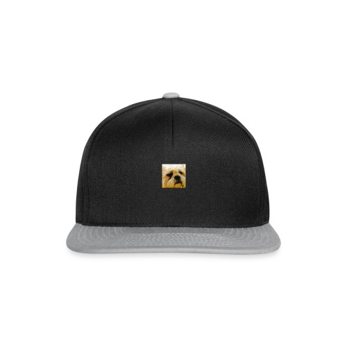 BUDDY DOG - Snapback Cap