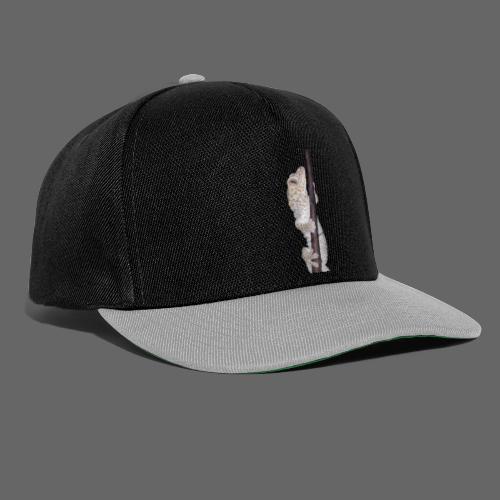 Tandløs - Snapback Cap