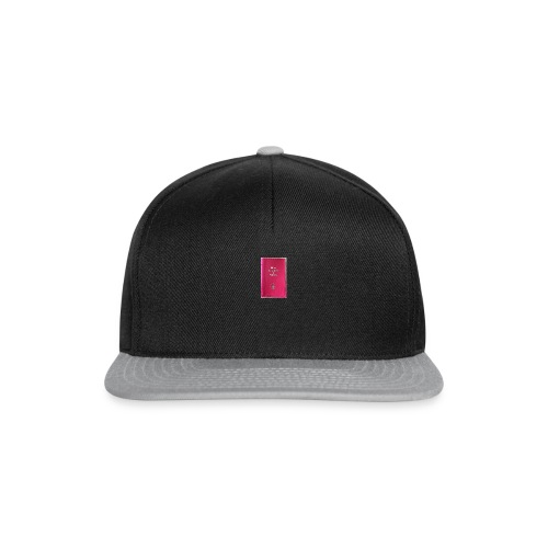 Thy Lords holy preaching book! - Snapback Cap