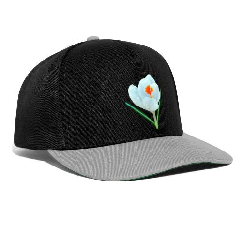 TIAN GREEN - Krokuss 2020 - Snapback Cap