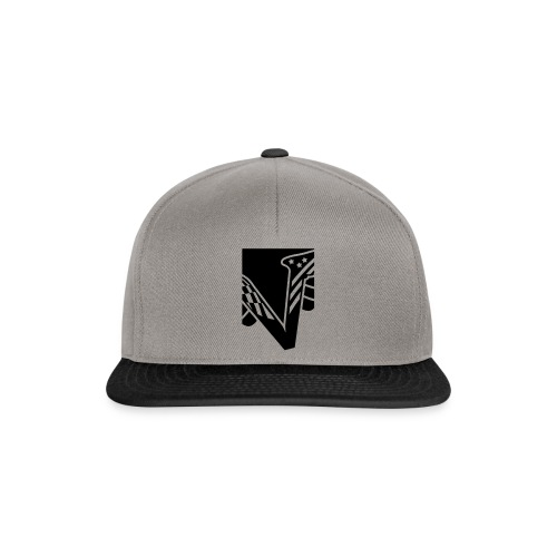 Velocity - V - Snapback Cap