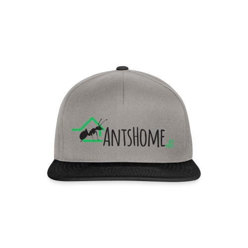 AntsHome Single Branding - Snapback Cap