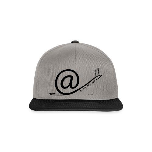 Snail Express - Snapback Cap