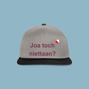 Joa toch niettaan def b - Snapback cap