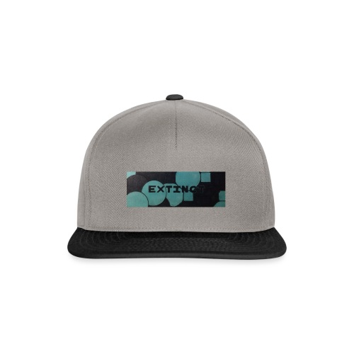 Extinct box logo - Snapback Cap