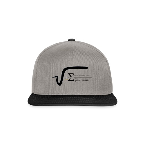Halal Equations - Snapback Cap