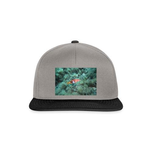 D0920038 ECD5 4545 A903 007D901BFA72 - Snapback Cap