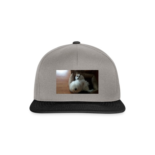 Camiseta especial - Gorra Snapback