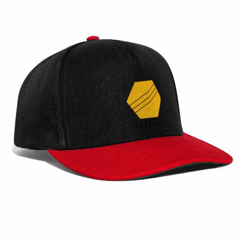 Disciple - Snapback Cap