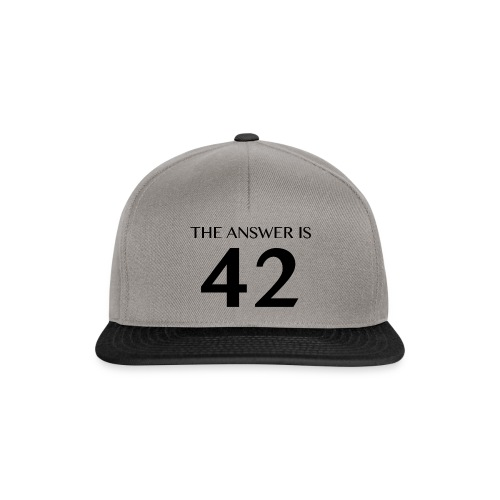 The Answer is 42 Black - Snapback Cap