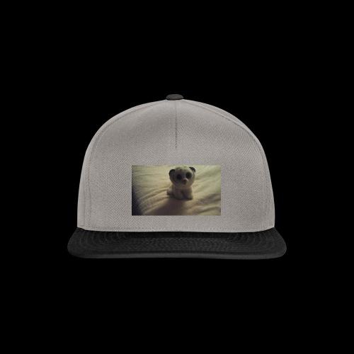 1542498310448 1813330036 - Snapback Cap