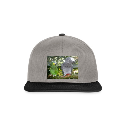 Amazone og grå - Snapback Cap