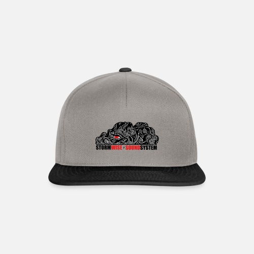 stormwise logo rectangle - Casquette snapback