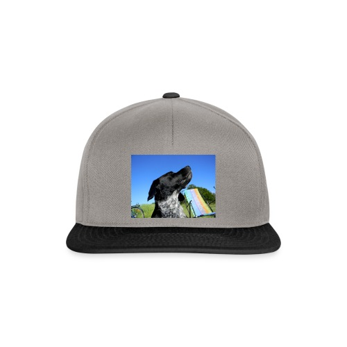blauer himmel hund sommer 23331 - Snapback Cap