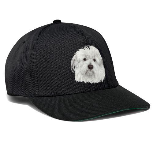 coton-de-tulear - Snapback Cap