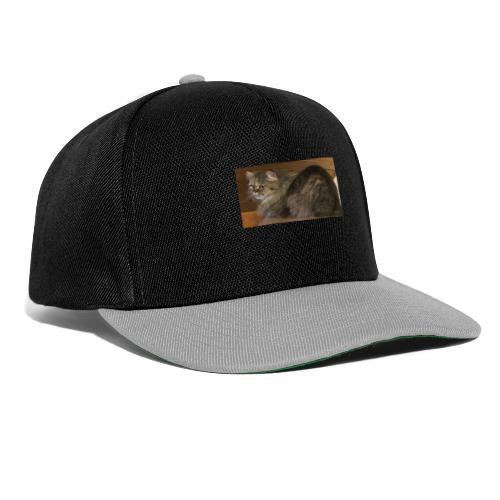 Pablo the Cat - Snapback Cap