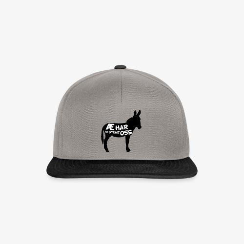 Esel-politikk - Snapback-caps
