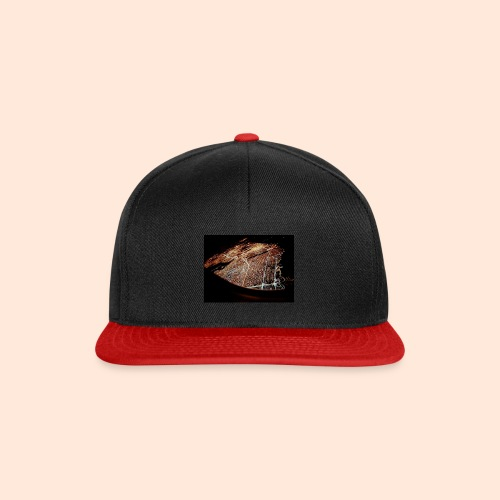 20160903 182337 - Snapback Cap
