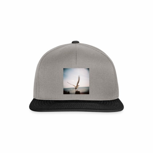 Original Artist design * Seagull - Snapback Cap