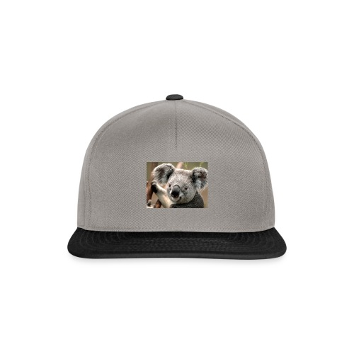 Koala - Gorra Snapback