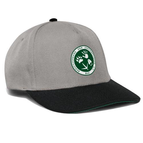 BdZ Logo - Snapback Cap