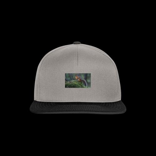 4335708 - Snapback-caps