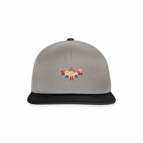 ngVikings group - Denamrk - Snapback Cap