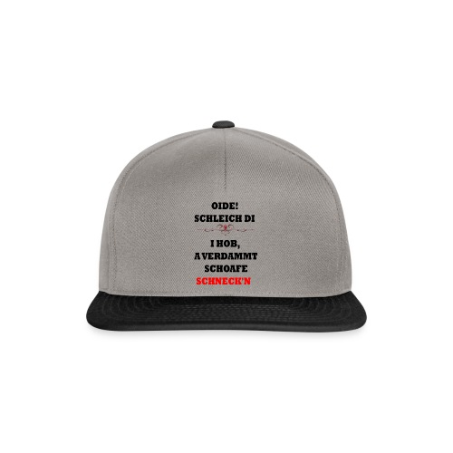 OIDE - Snapback Cap