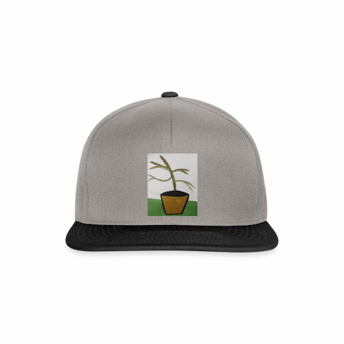 Plant - Snapback Cap