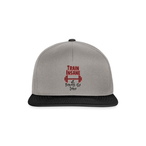 Train Insane - Snapback Cap
