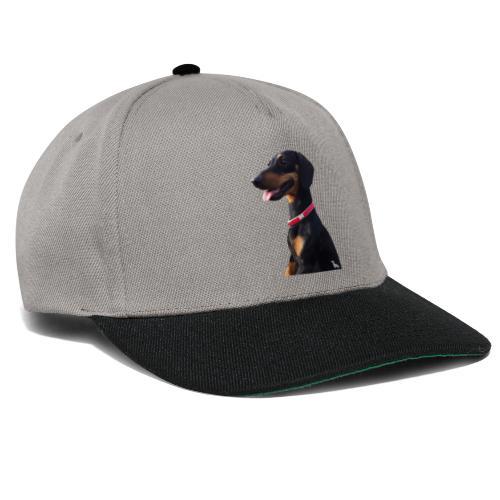 Bassotto Felice - Snapback Cap