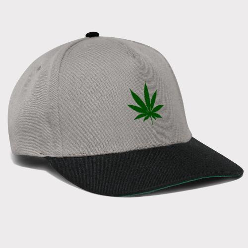 Erba - Snapback Cap