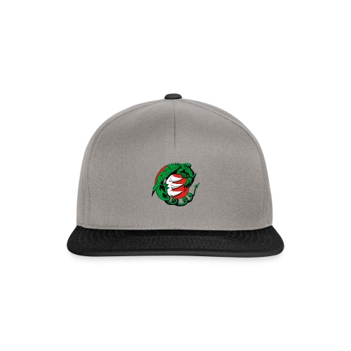 Hungary Dragon - Snapback Cap