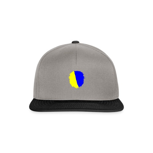 My merch - Snapback Cap