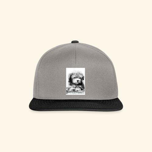 Cotton havanna - Snapback Cap