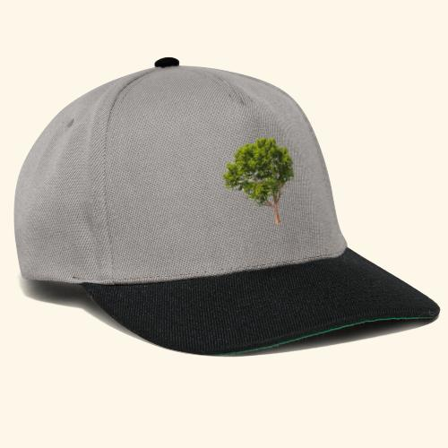 baum2 - Snapback Cap