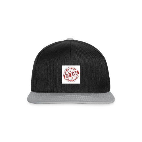 DSP band logo - Snapback Cap