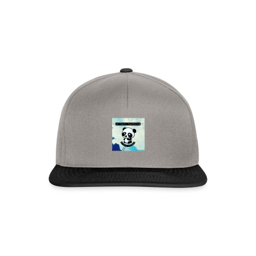 IMG_20161104_141052 - Casquette snapback