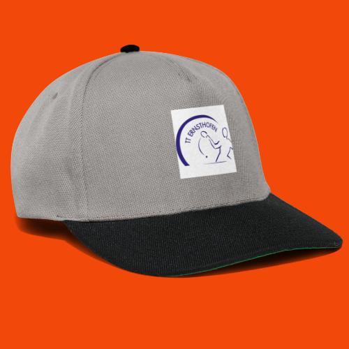 TTE Logo - Snapback Cap