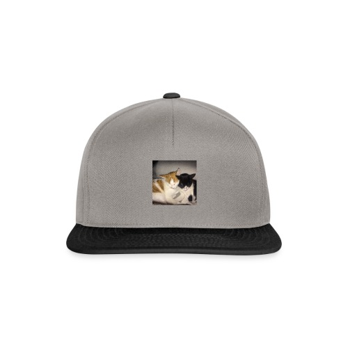 Schlafende Kätzchen - Snapback Cap