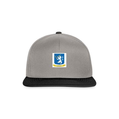 TheRealAlle4433 Logo - Snapback Cap