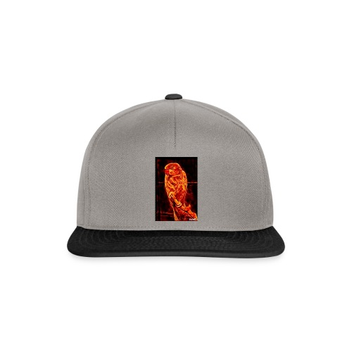 Bird in flames - Snapback Cap